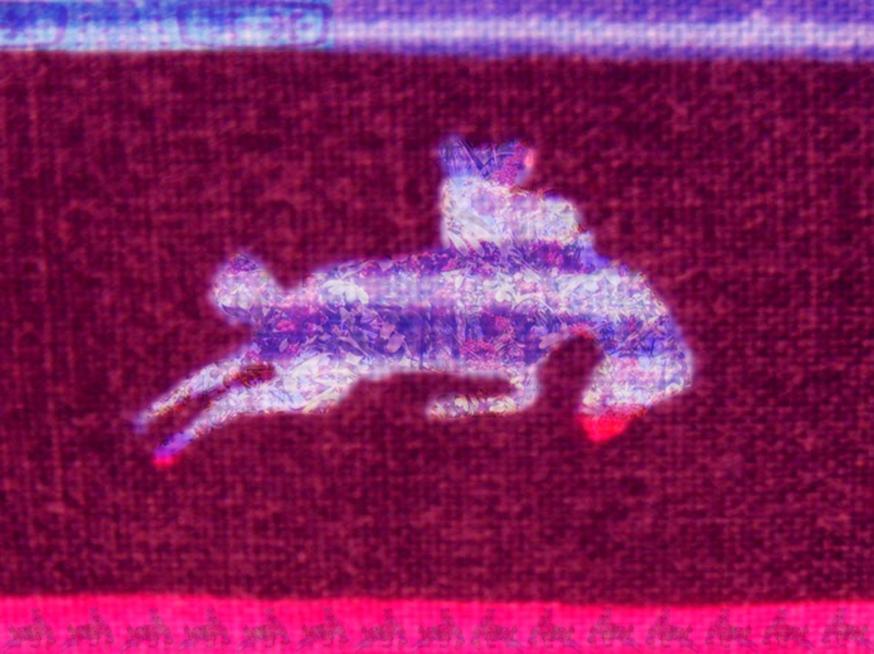 """""""Revolutionary Rider"""" 2007"""